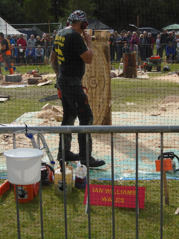 Carve carrbridge scottish open chainsaw carving
